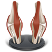 icon of crooked legs showing arthrtitis