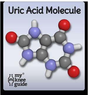 Uric Acid Molecule in gout